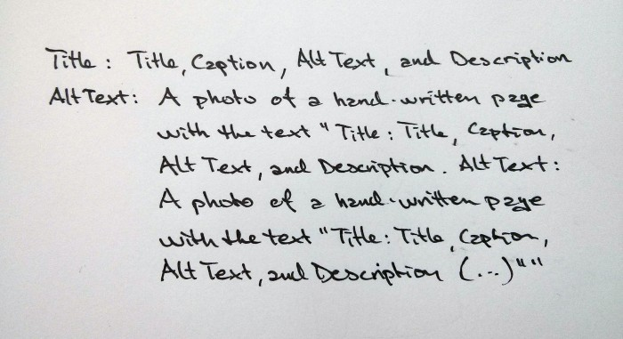 Title, Caption, Alt Text, and Description: Image Meta in WordPress